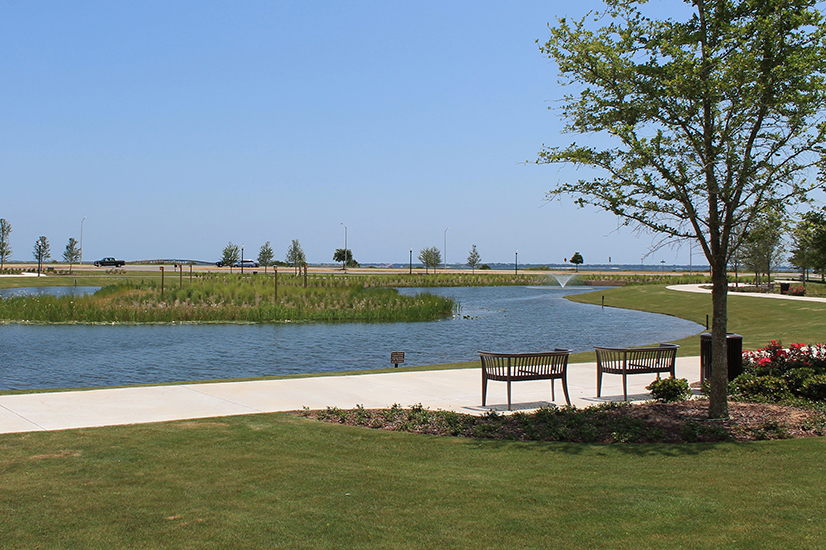 A coastal park with a pond in the background, benches near a tree in the foreground.