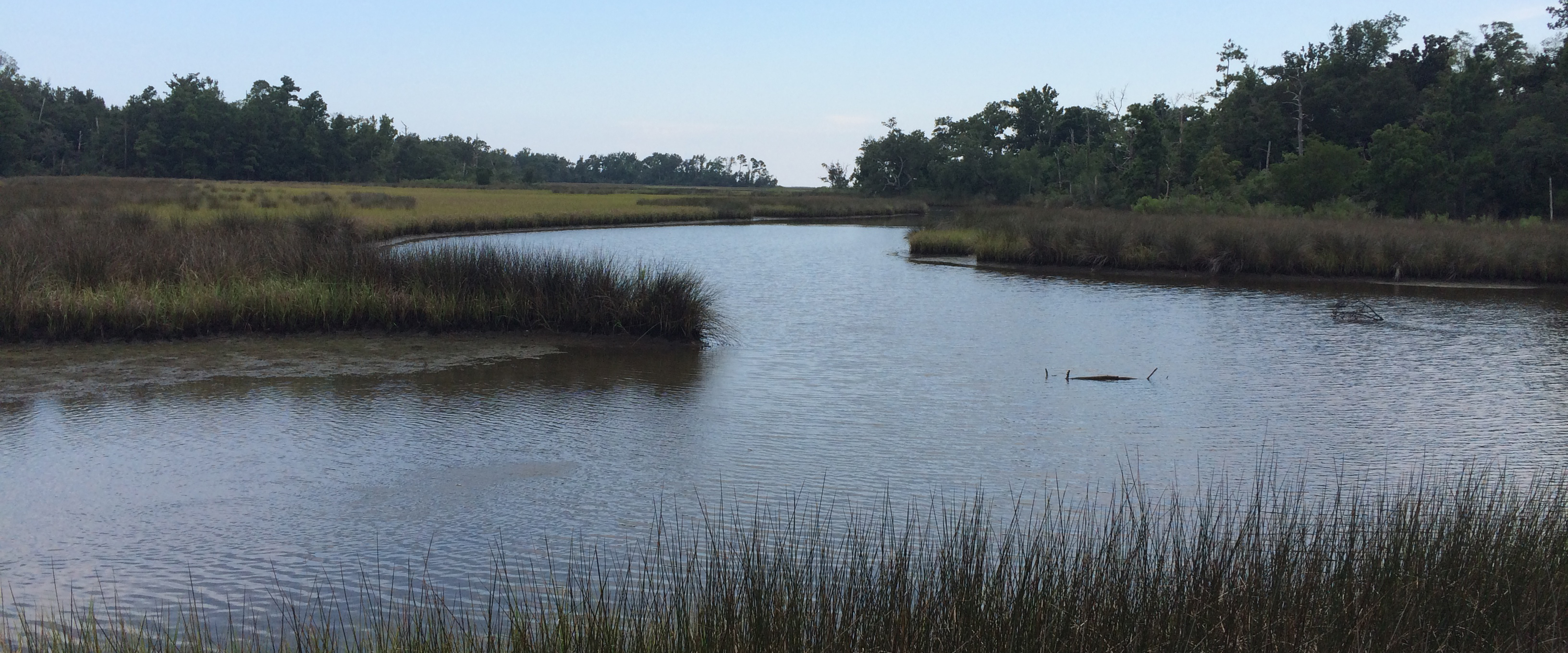 Alabama Releases Second Restoration Plan