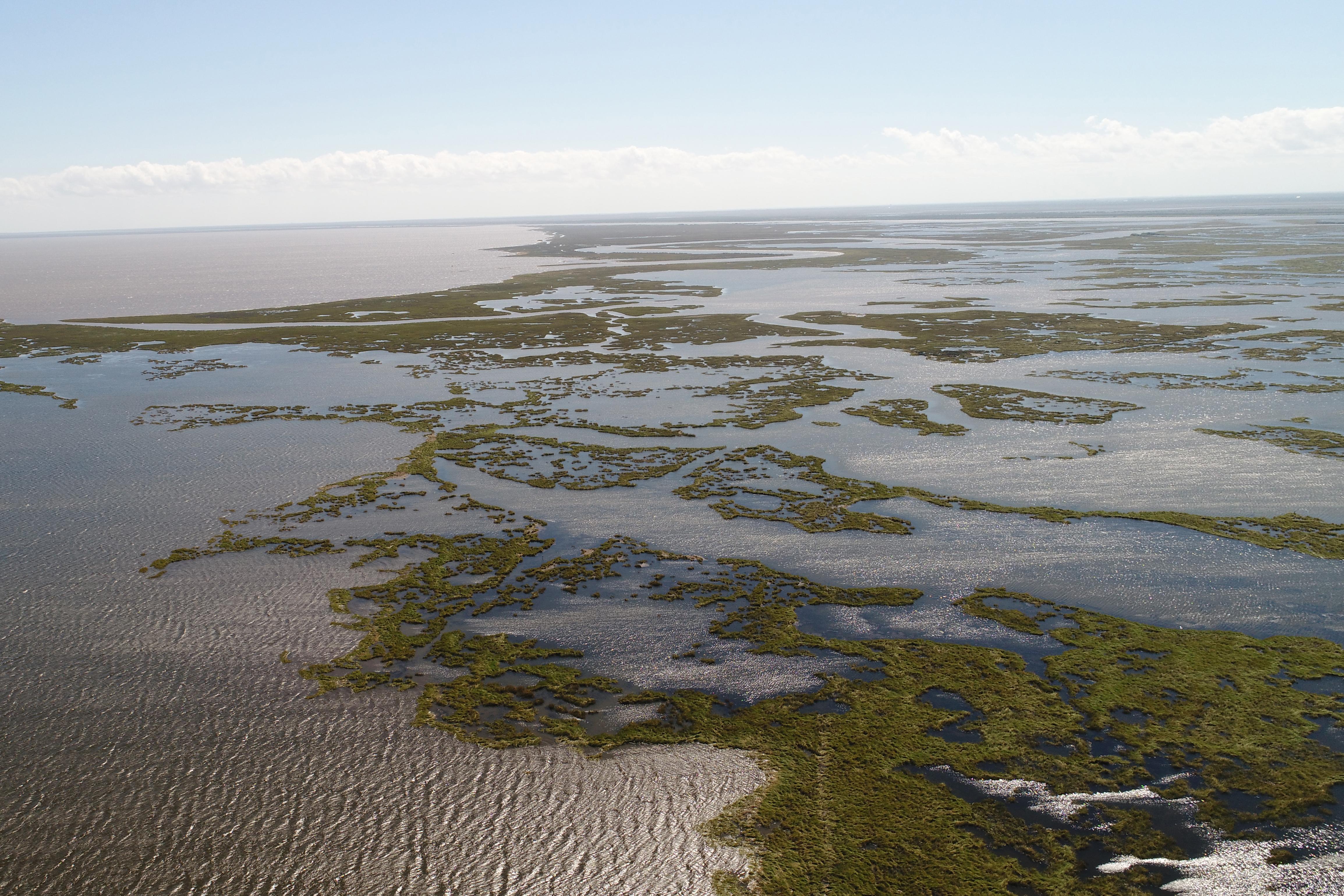 Aerial view of degrading coastal marsh in Louisiana.