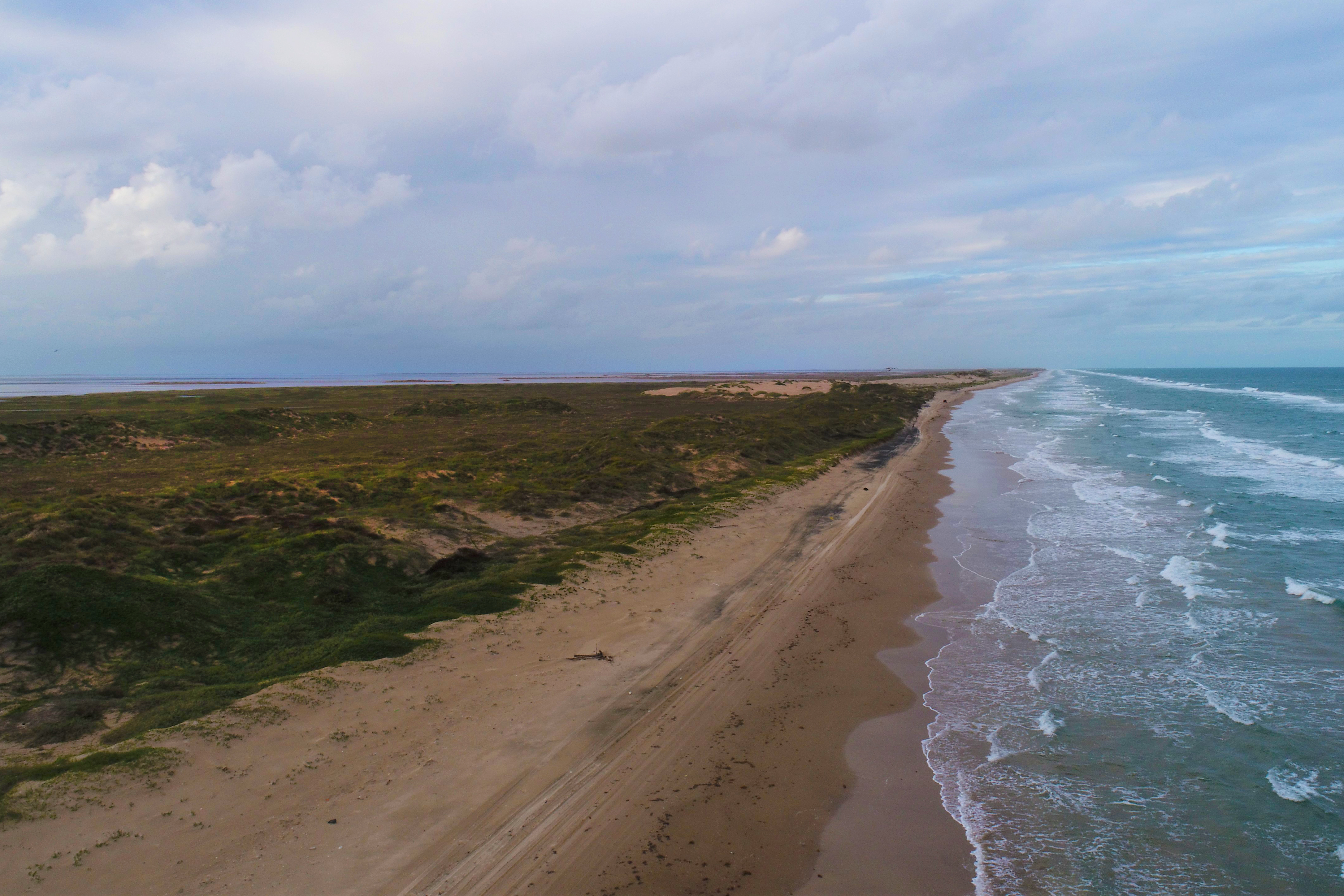 Aerial view of the Texas coastline, with vegetated dunes and sandy beach, on the Gulf of Mexico.