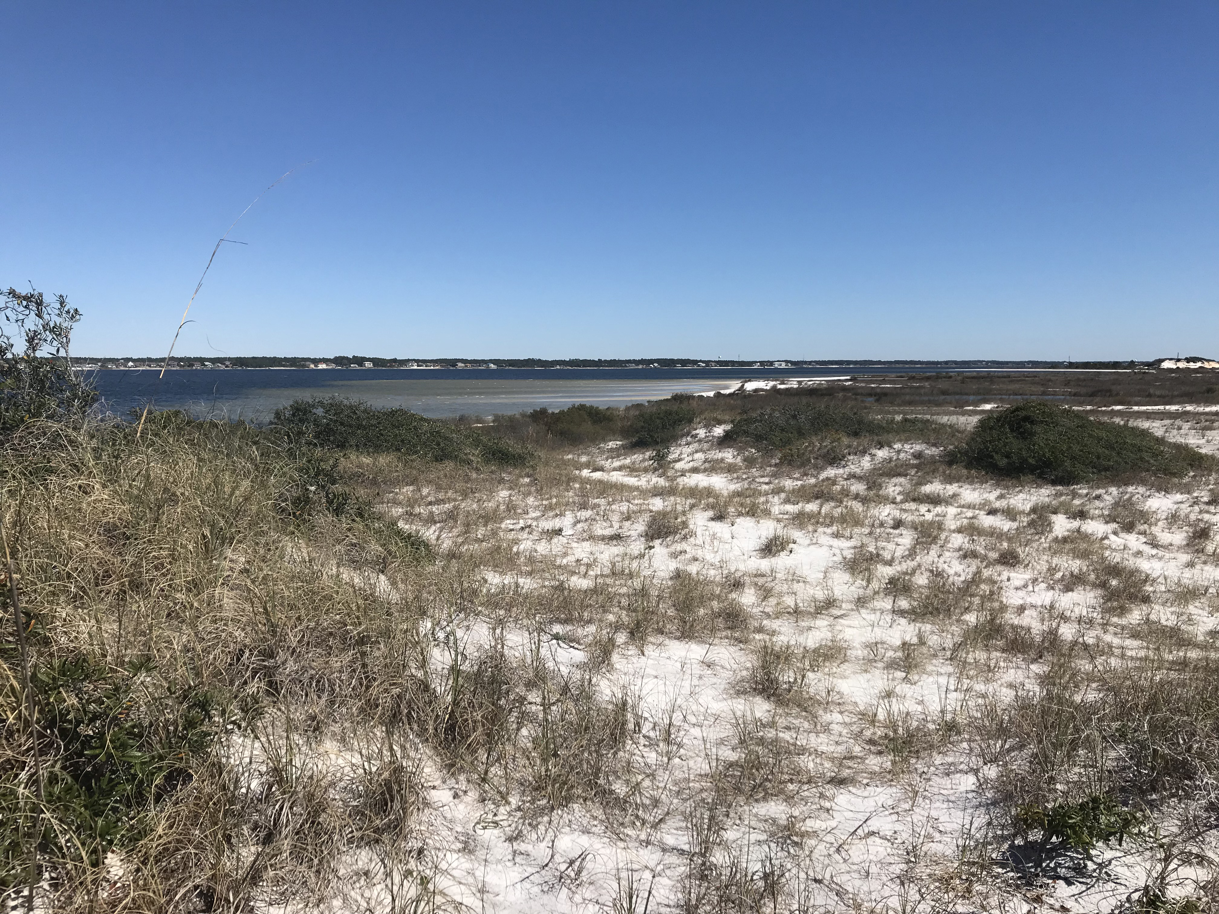 Coastal sand dunes with water in the background off Florida's coast.