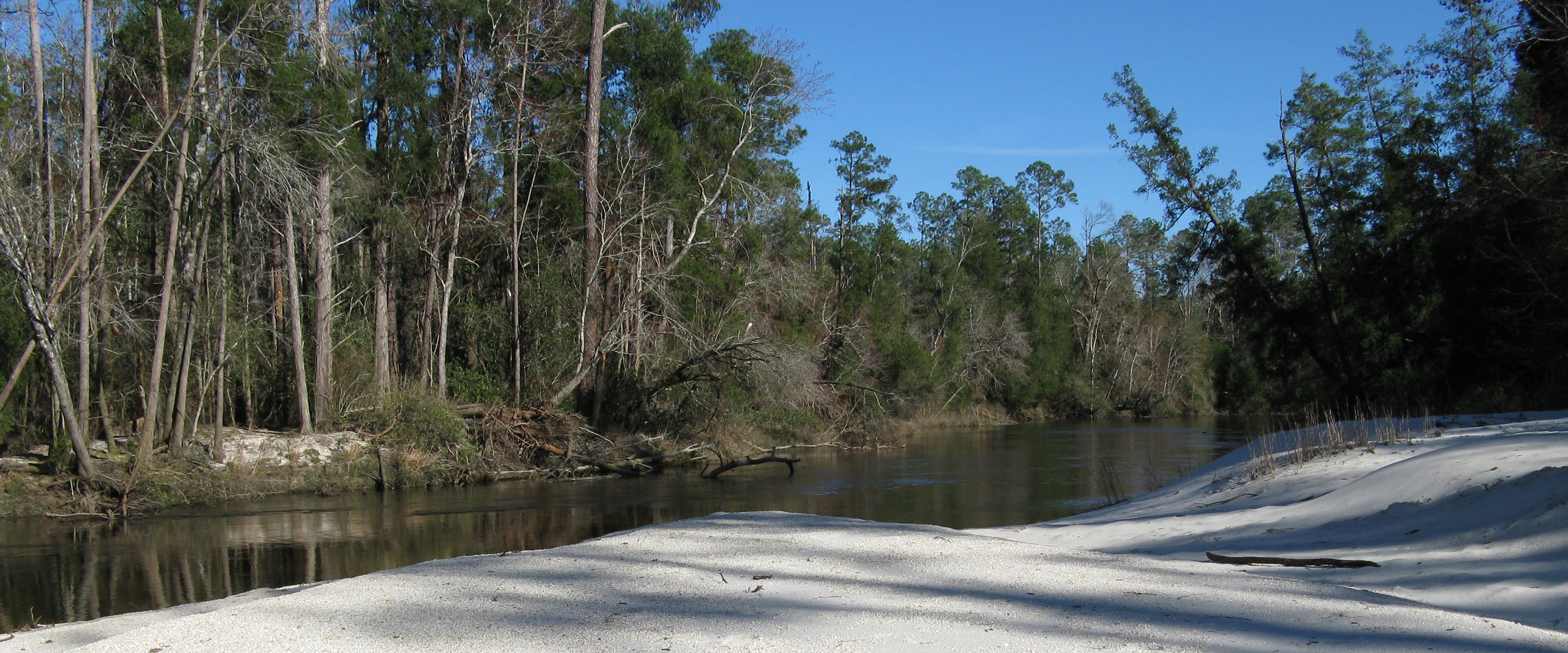 Alabama Restoration Area Draft Plan for Recreation and Birds Released