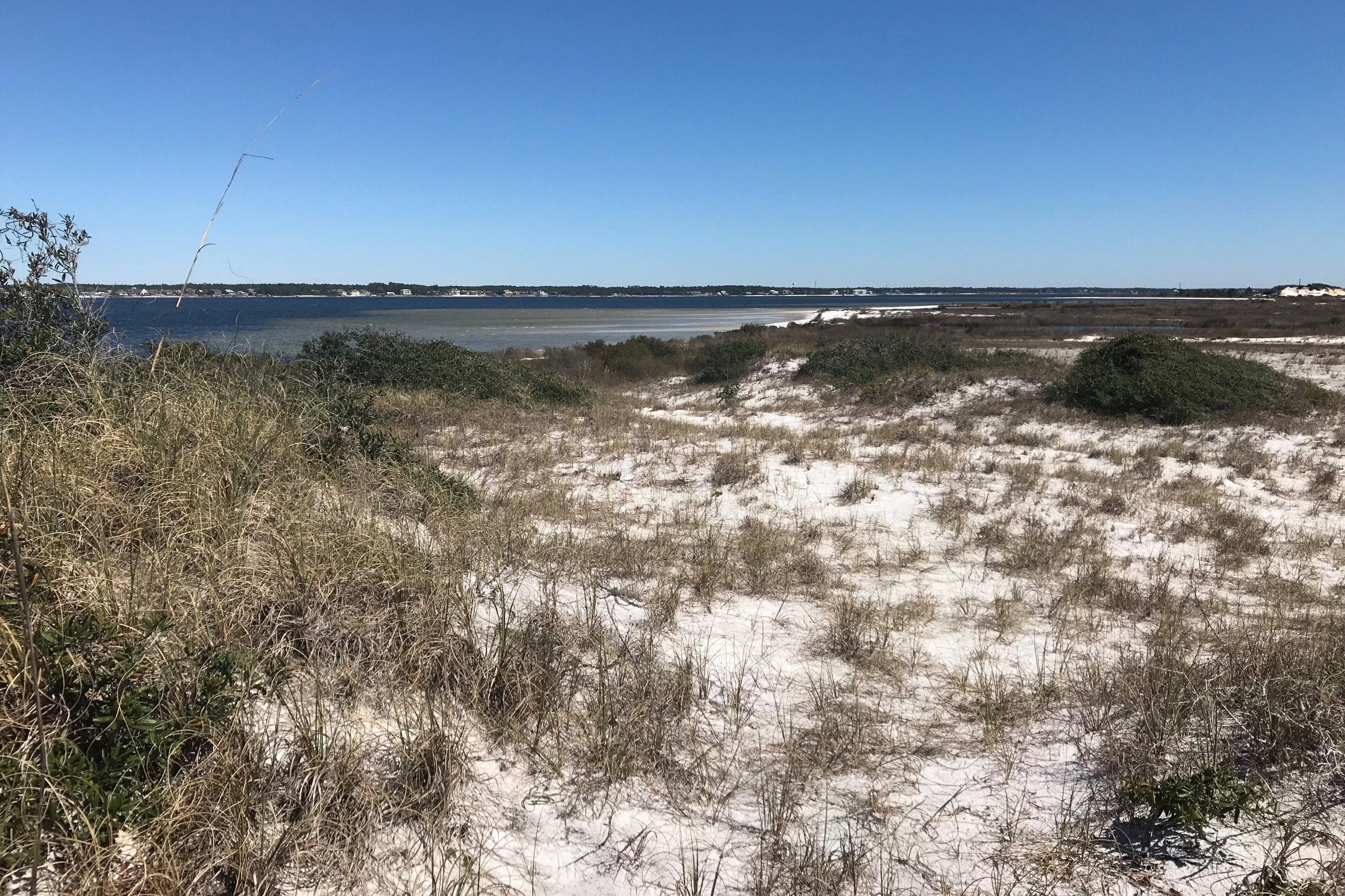 Dunes at Navarre Beach Marine Park, one of the Florida Coastal Access projects.