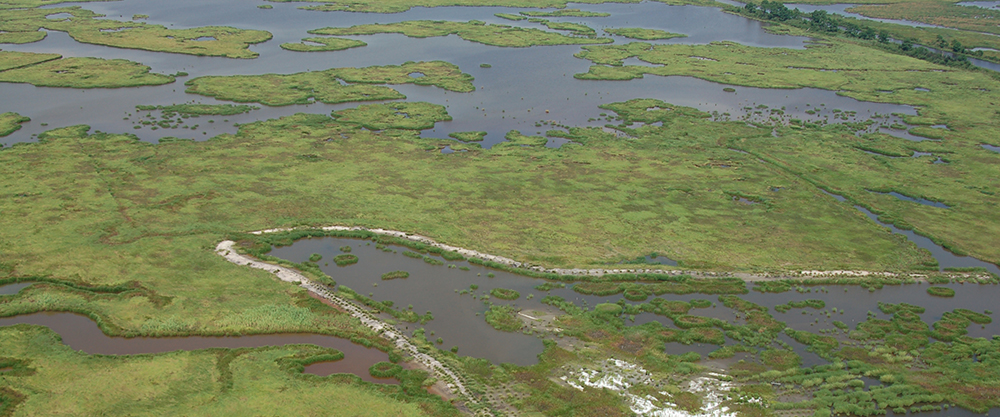 Almost $12 Million in New Coastal Monitoring Funding Approved in Louisiana