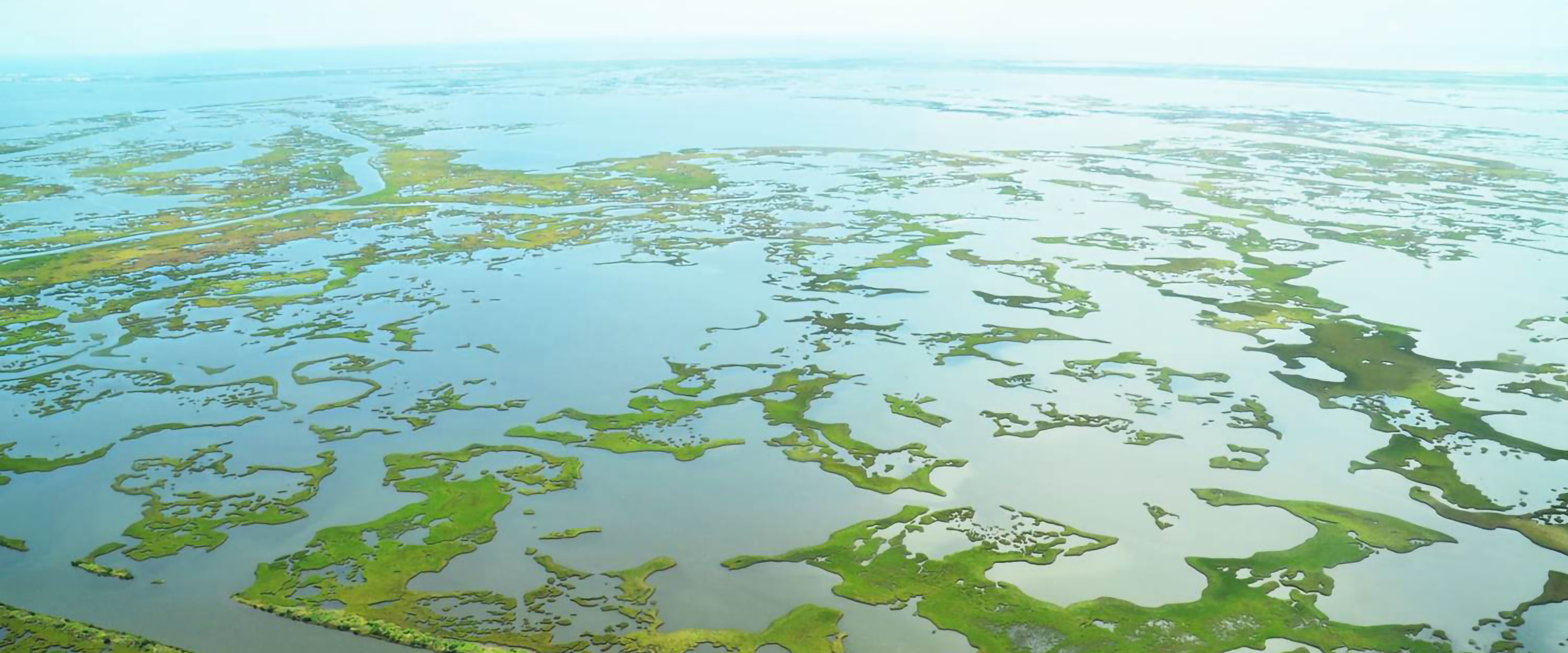 Draft Plan for Design of Barataria Marsh Creation Project Open for Comment