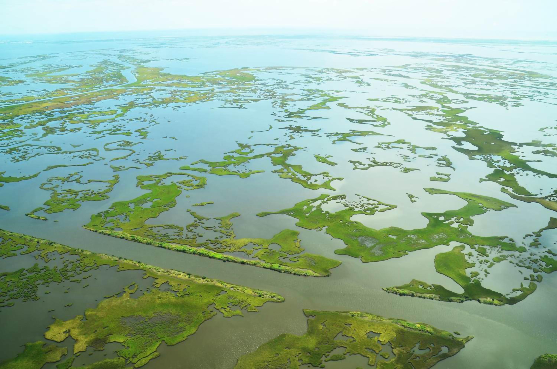 Aerial view of deteriorating marsh in louisiana.