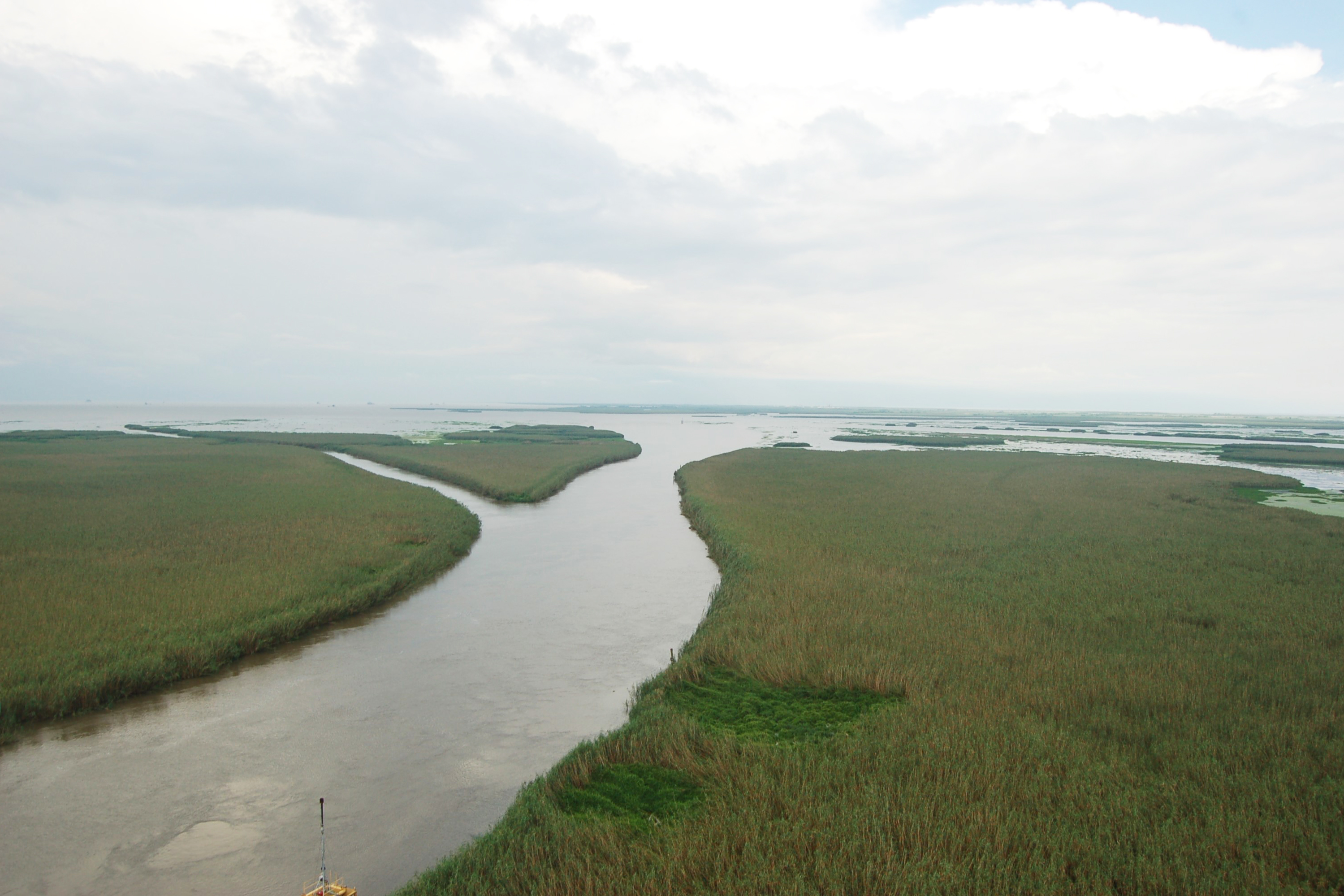 Marsh and river channels in the Mississippi River Delta