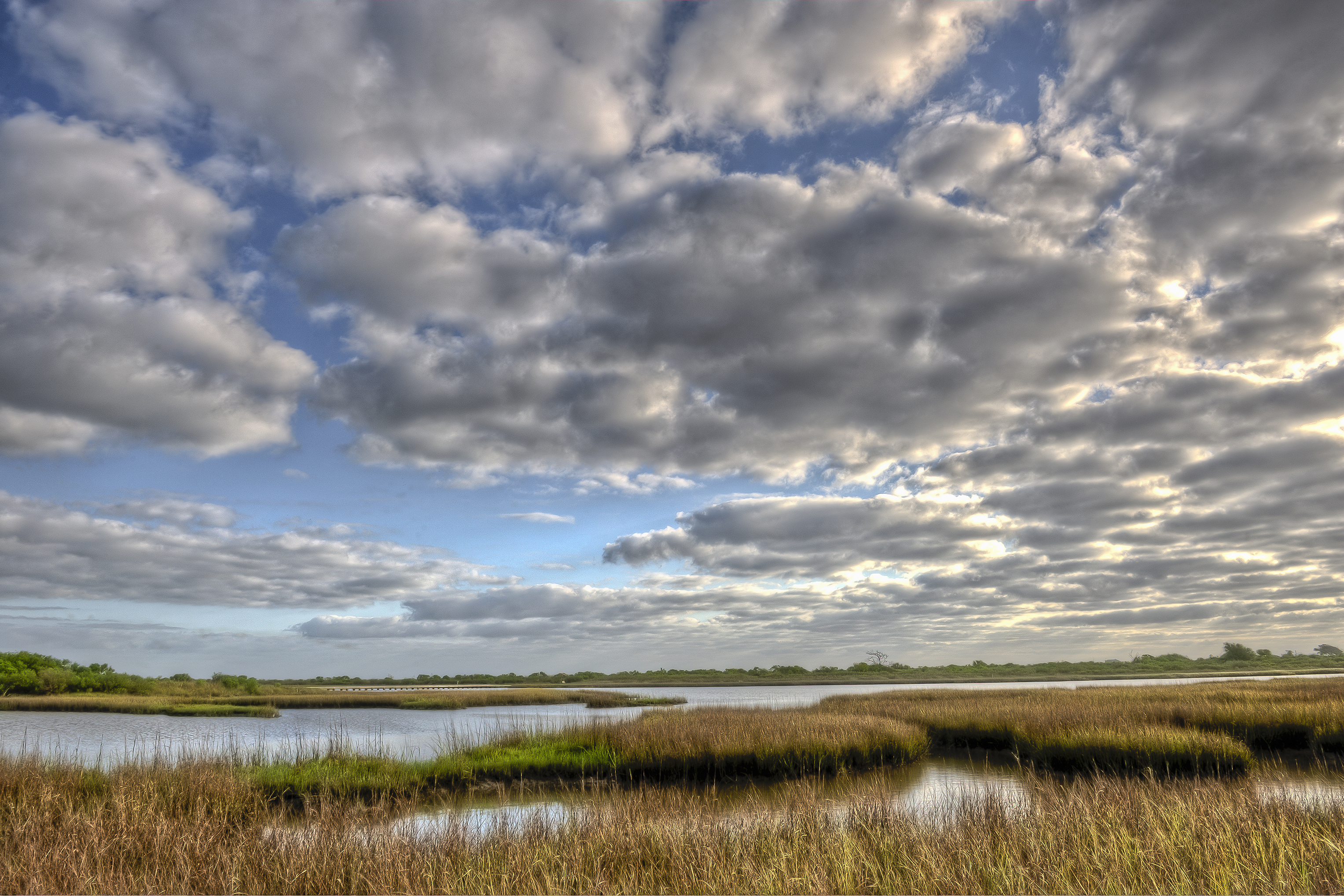 Marsh with some open water under layer of clouds dotting a bright blue sky..