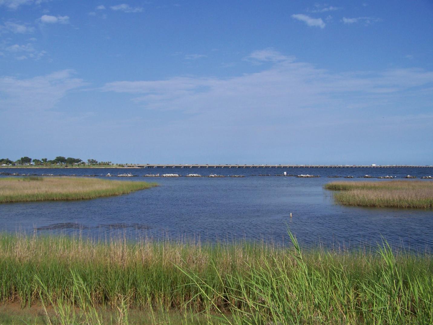 Florida living shorelines