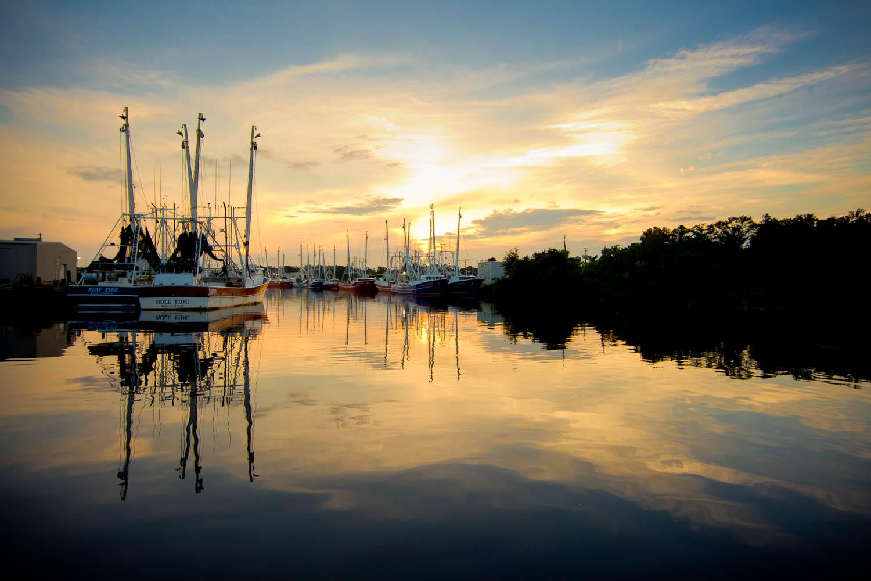 Shrimp boats docked in Bayou la Batre, Alabama. Image: Billy Pope/Outdoor Alabama
