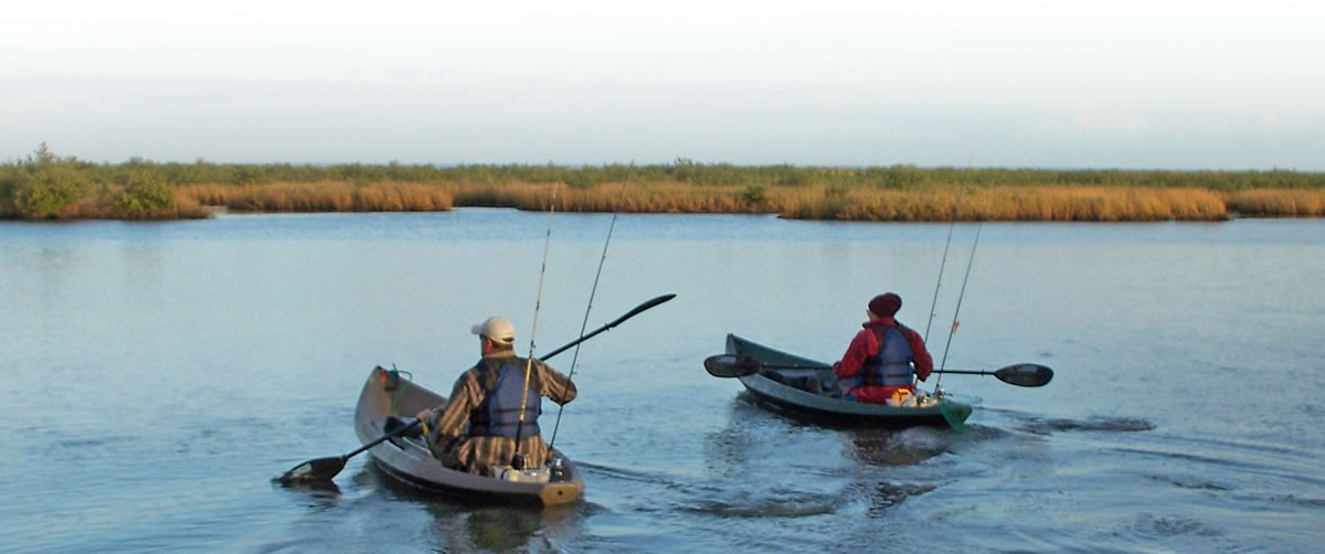 Notice of Intent to Draft Restoration Plan in Louisiana