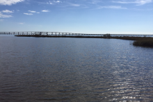 Mississippi Trustees Release Notice Canceling Three Components of the Restoring Living Shorelines Early Restoration Project