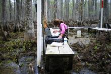 Louisiana Approves Funding for a Programmatic Monitoring and Adaptive Management Strategy