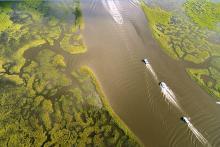 POSTPONED: Louisiana Trustee Implementation Group Annual Public Meeting Webinar