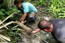 New Report Charts Adaptive Management Vision for Louisiana Coastal Restoration