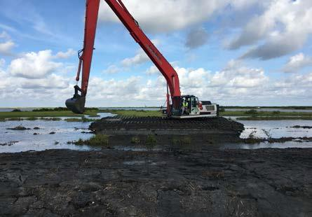 barrier island restoration in Louisiana