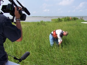 Media observing shoreline surveys in Barataria Bay.