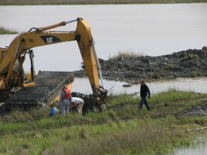 4.2 - Restoring a wetland in Louisiana.
