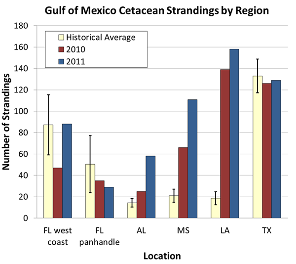 Gulf of Mexico Cetacean Strandings by Region
