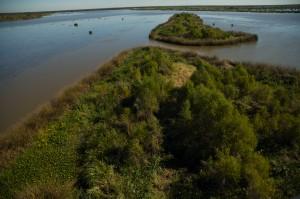 Louisiana shoreline
